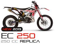 ec_replica_250_2013